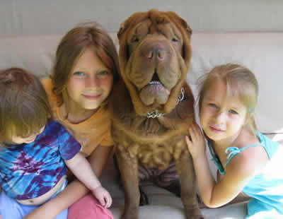 Chewy and the girls
