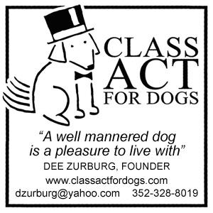 Class-Act-Info