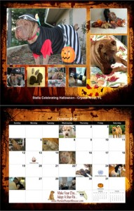 fspr calendar 2014