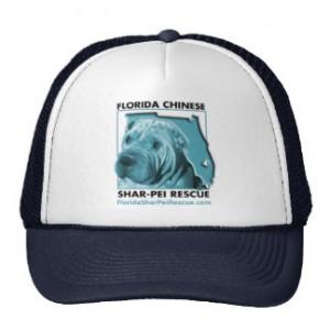 fspr_blue_vintage_hat